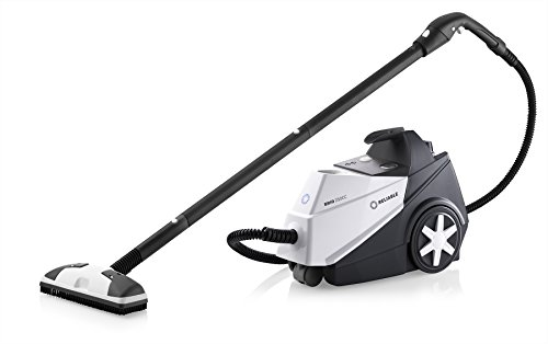 Reliable 250cc Brio Steam Cleaner Multi Purpose Vacuum Cleaner Shop